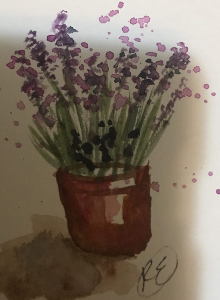 "Just posting little late on May 1st prompt "" flowers"". I really wanted to view the Lavender fest"