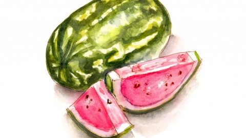 Day 20 - Watermelon Watercolor Unexpected Berries - #doodlewashMay2018 - Doodlewash