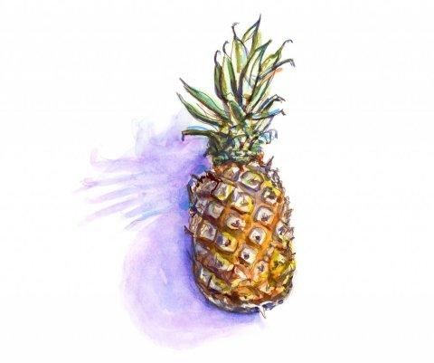 Day 27 - Pineapple Watercolor Illustration #doodlewashJune2018 Doodlewash