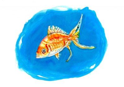 Day 7 - Inside A Little Bubble - Goldfish #doodlewashJune2018 Doodlewash