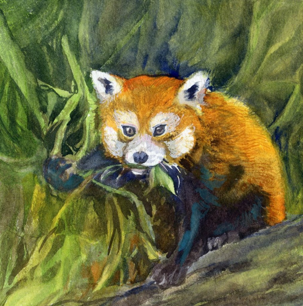 Wild Life – Looks more like a fox, but it's supposed to be a red panda. Eats, Shoots &am