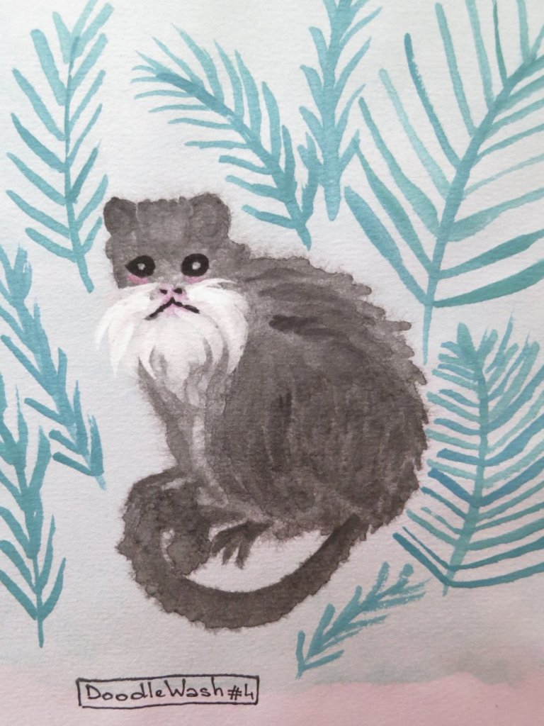 Day 4. It was so funny to draw this little guy. An Emperor tamarin with a beautiful moustache. https