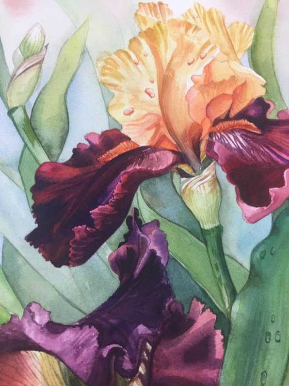 Watercolor Painting by Karen Paul - #WorldWatercolorGroup Doodlewash