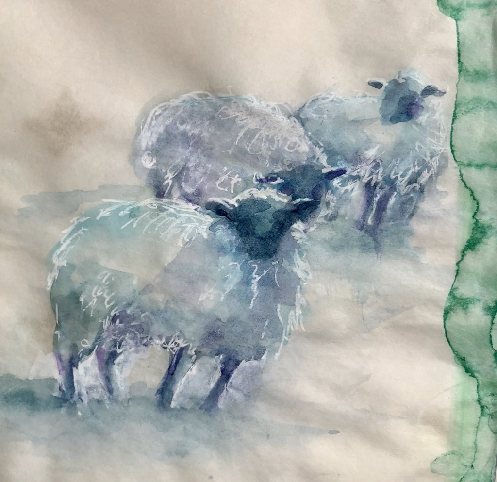 Shades of blue. Practicing my sheep for next weeks painting trip to Ireland. 2221F7D1-B023-45C7-92E0