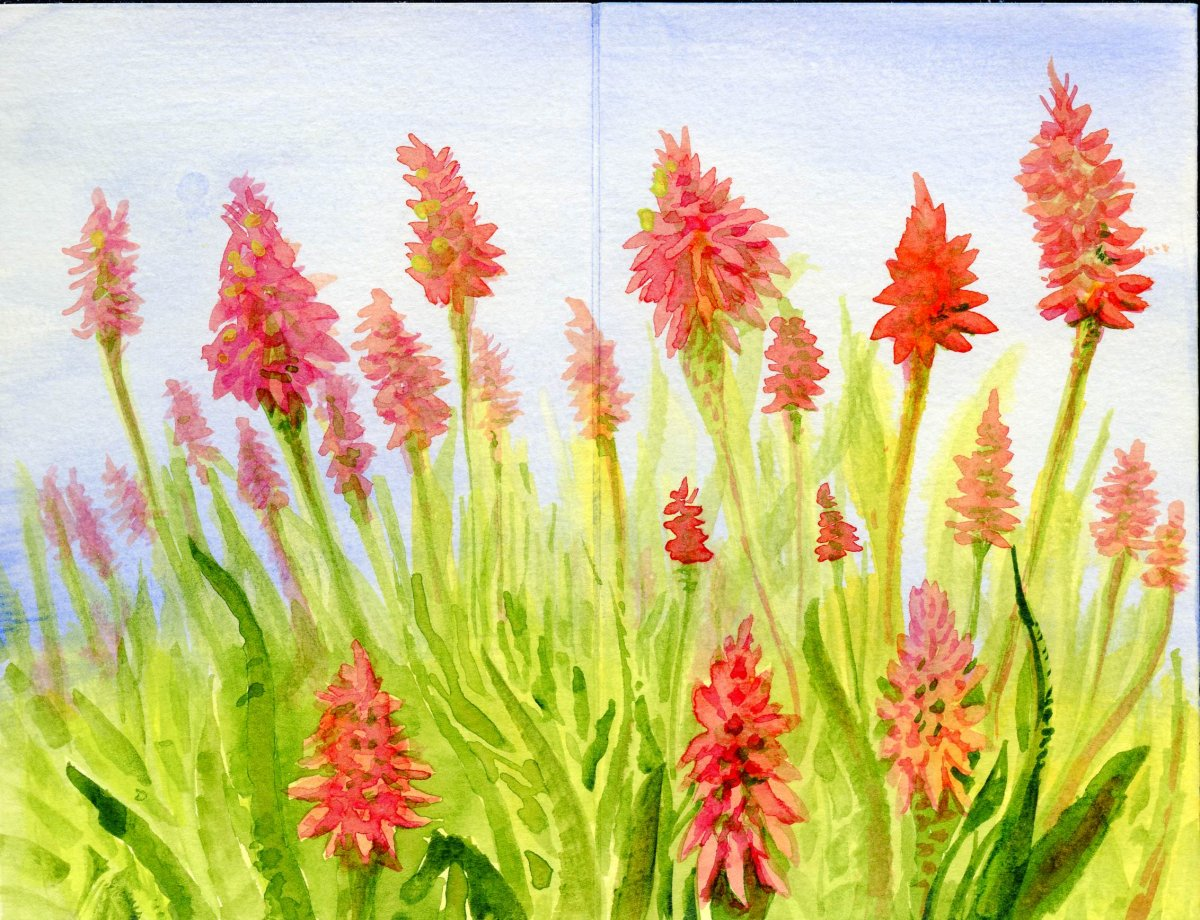 Watercolor flowers with Princeton Velvetouch Brushes by Sandra Strait - Doodlewash