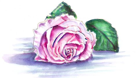 Day 11 - World Watercolor Month Beautiful Blooms Rose - Doodlewash