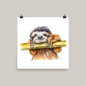 Sloth Watercolor Print For Sale - Doodlewash
