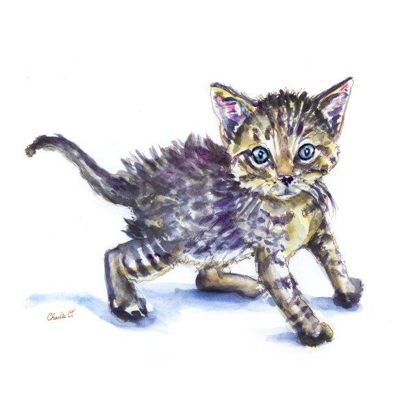 Kitten Watercolor Print Furry Creatures - Doodlewash