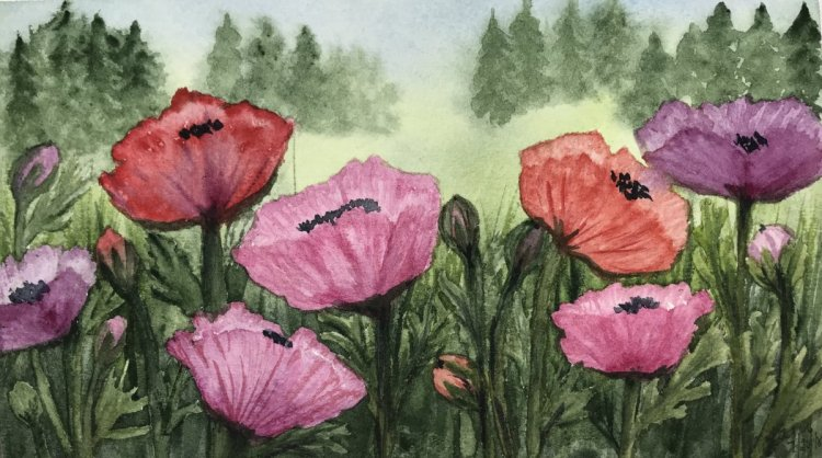"""""""The Edge of the Garden""""… Daniel Smith Watercolors on Arches Journal… 8.5&#8"""