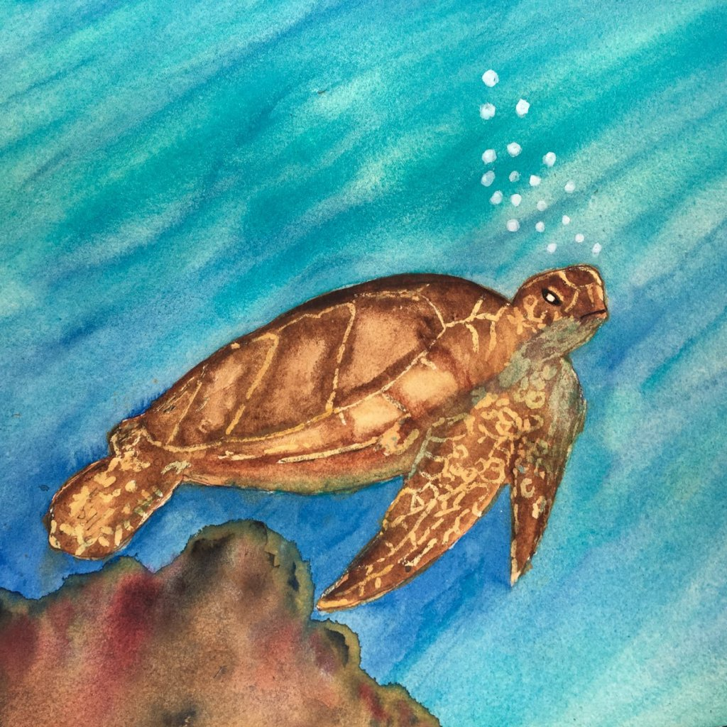 Day 22 of World Watercolor Month … Prompt – Under The Sea. I had my first go at painting a s