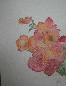 Day 11 Beautiful flowers. Trumpet creepers from my neighbour's garden. Watercolour and waterco