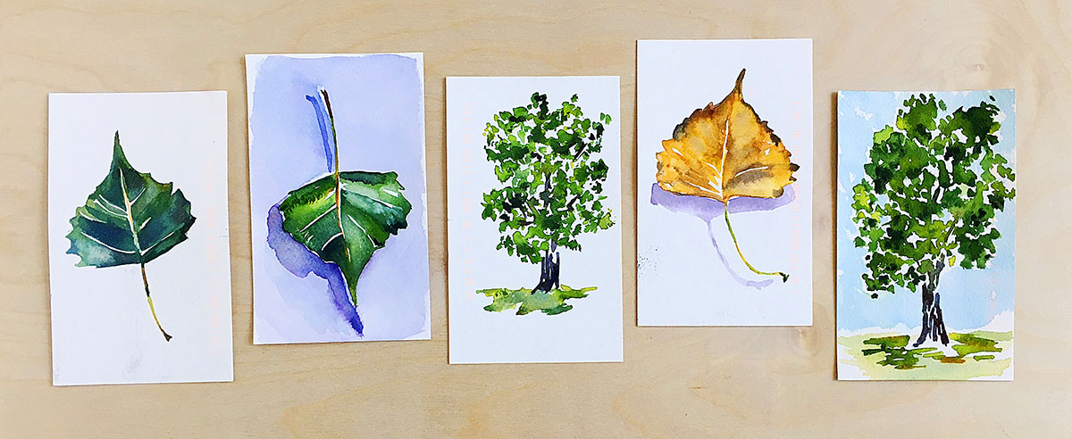Watercolor by Lisa Spangler - Doodlewash