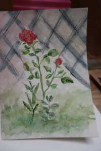 Roses decided to bloom again! #WorldWatercolorMonth rose