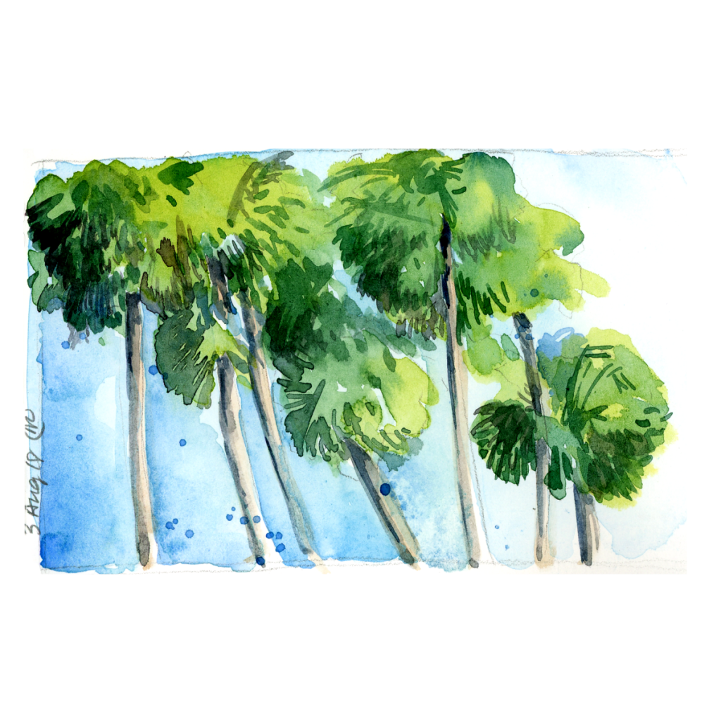 Travel Stores, Day 3: Palm Trees 201800803_watercolor_palmtrees