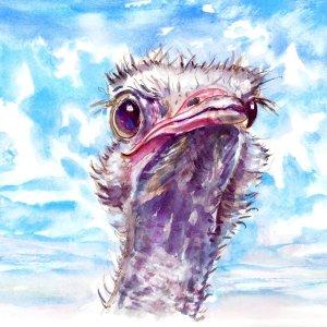 Clouds-In-The-Sky---Emu Watercolor Print