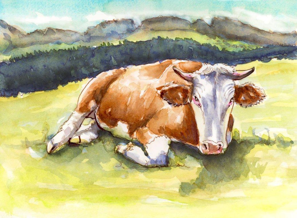 Like A Cow In A Field Doodlewash