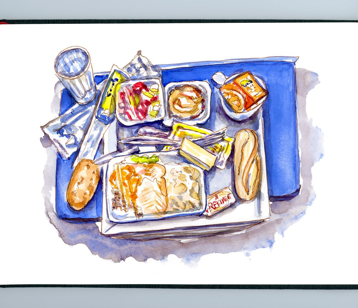 Day 14 - The Joys Of Airline Food - Doodlewash