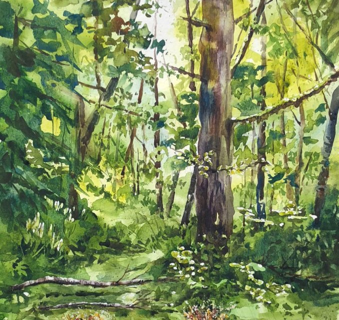 Watercolor Painting by Jim Huppenthal - Trees