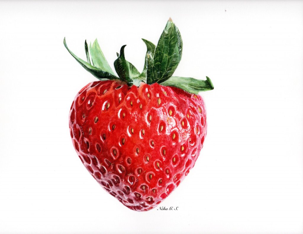 Strawberry Watercolor Painting by Neha Subramaniam - Doodlewash