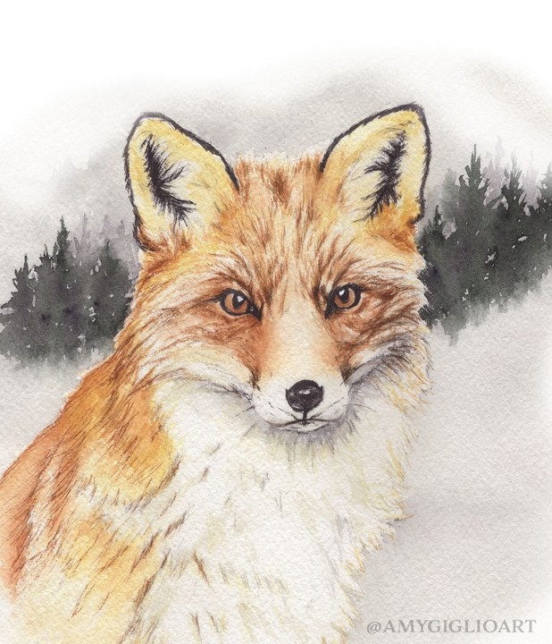 Little Fox Watercolor by Amy Giglio - Doodlewash
