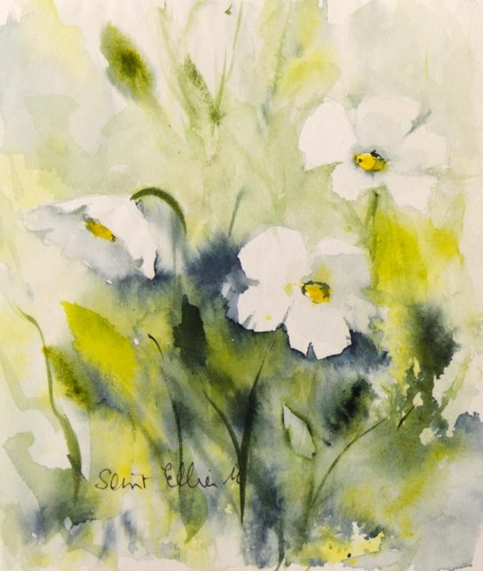 White Flowers Watercolor Painting by Martine Jacquel Saint Ellier - France