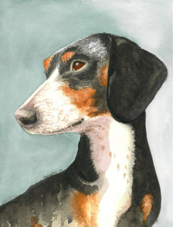 Piebald Dog Watercolor by Bernadette Sabatini - Doodlewash