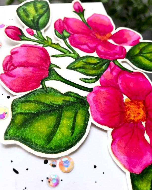 Bright Florals Watercolor by Rubeena Ianigro - Doodlewash