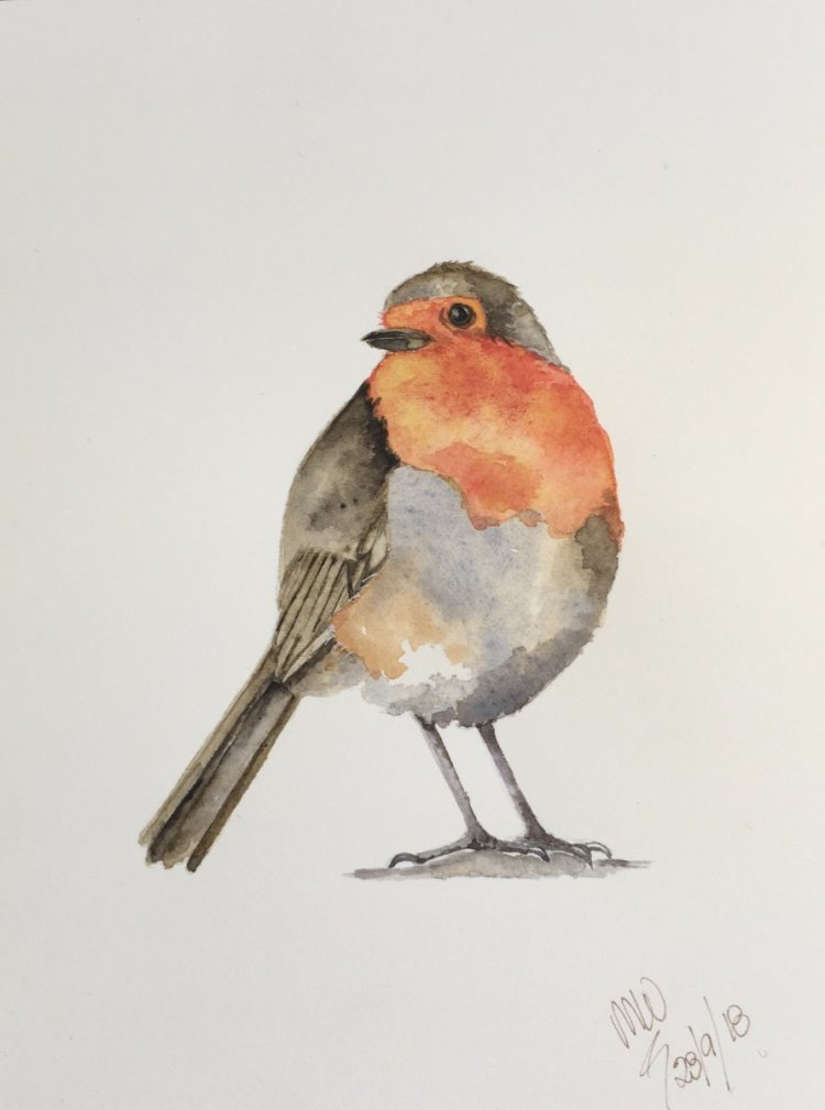 Robin – another from my class with Louise de Masi on Skillshare. fullsizeoutput_514