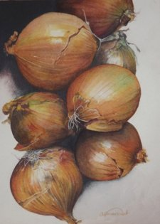 Onions Watercolor Painting by Angela Emsen-West