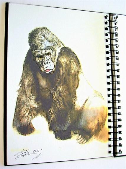 Watercolor Gorilla by Thomas Mühlbauer - Doodlewash