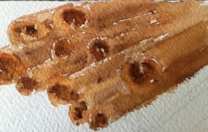 Spice day…..One minute cinnamon sticks. My favorite spice for taste and to keep blood sugars l