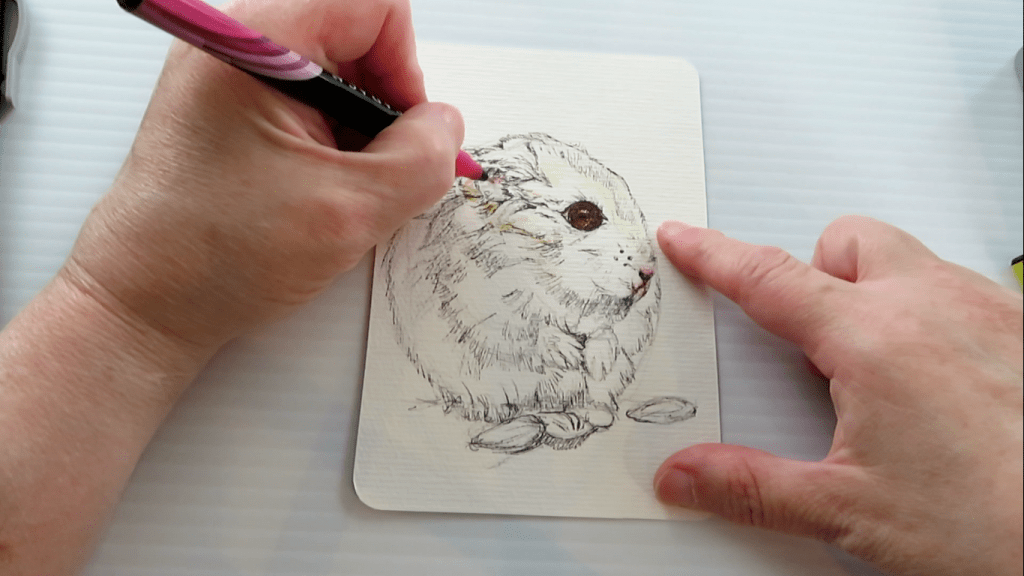 How to Draw A Hamster - Step 5 - Additional Colors - Doodlewash