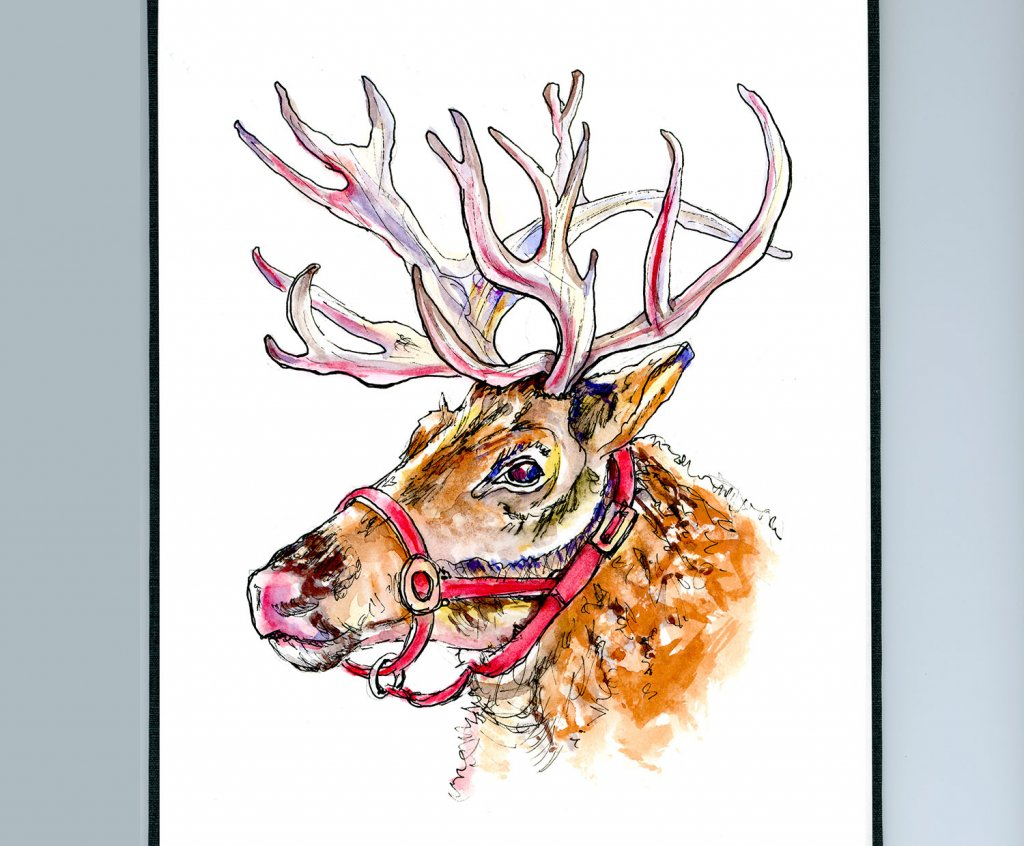 Christmas Reindeer Watercolor Sketchbook Detail - Doodlewash