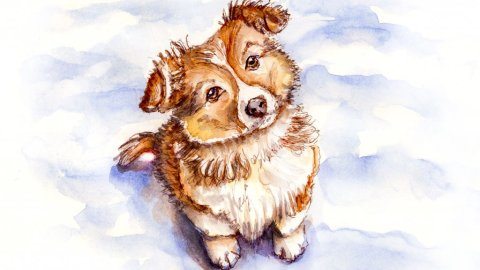 Day 26 - Puppy Dog In Snow - Sketchbook Detail - Doodlewash