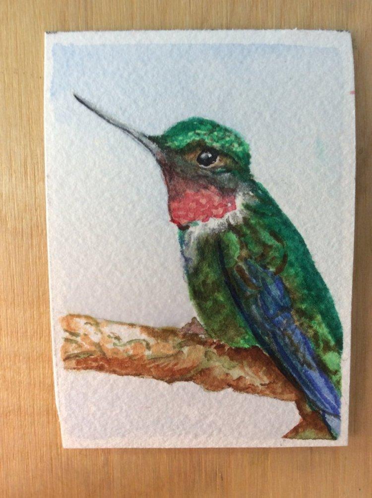 ATC – Hummingbird HummingbirdHummingbird