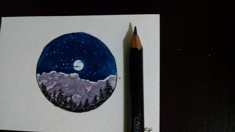 I got the idea for this painting from art for ants. IMG_20181107_171627997