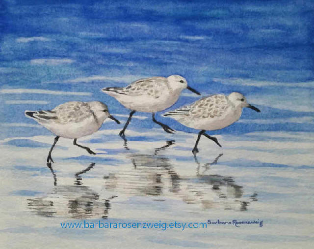 Sandpipers Watercolor by Barbara Rosenzweig - Doodlewash