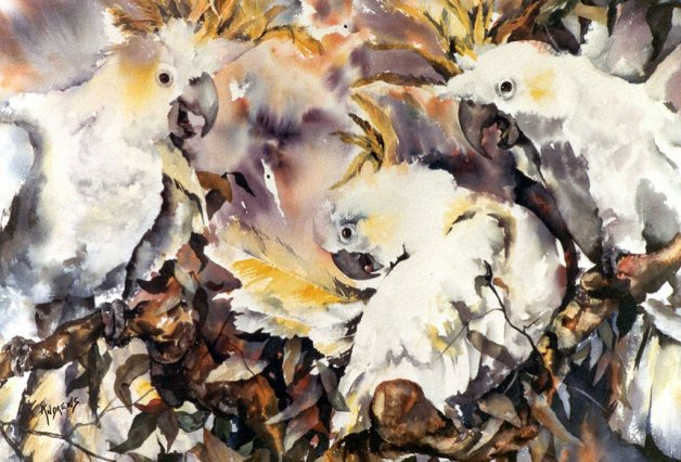 Watercolor by Rae Andrews - Birds