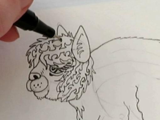 Drawing Patterns Step - alebrijes acuarela watercolor alpacamunk