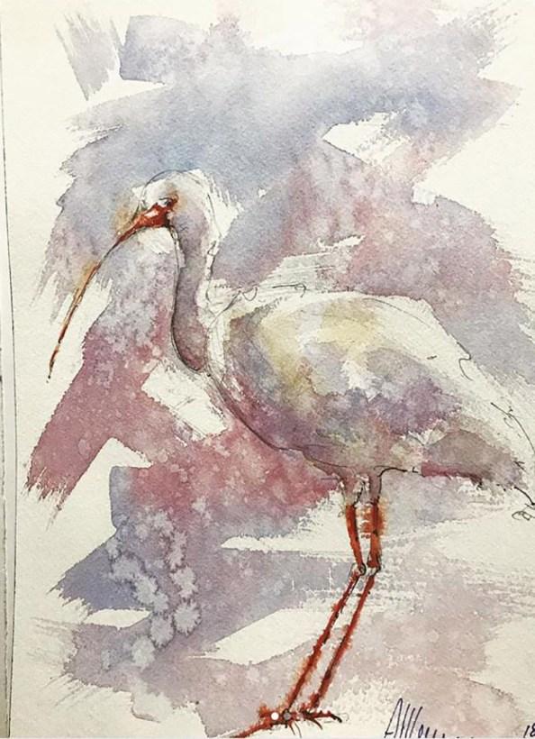 White Ibis 2 Watercolor By Al Kline - Doodlewash
