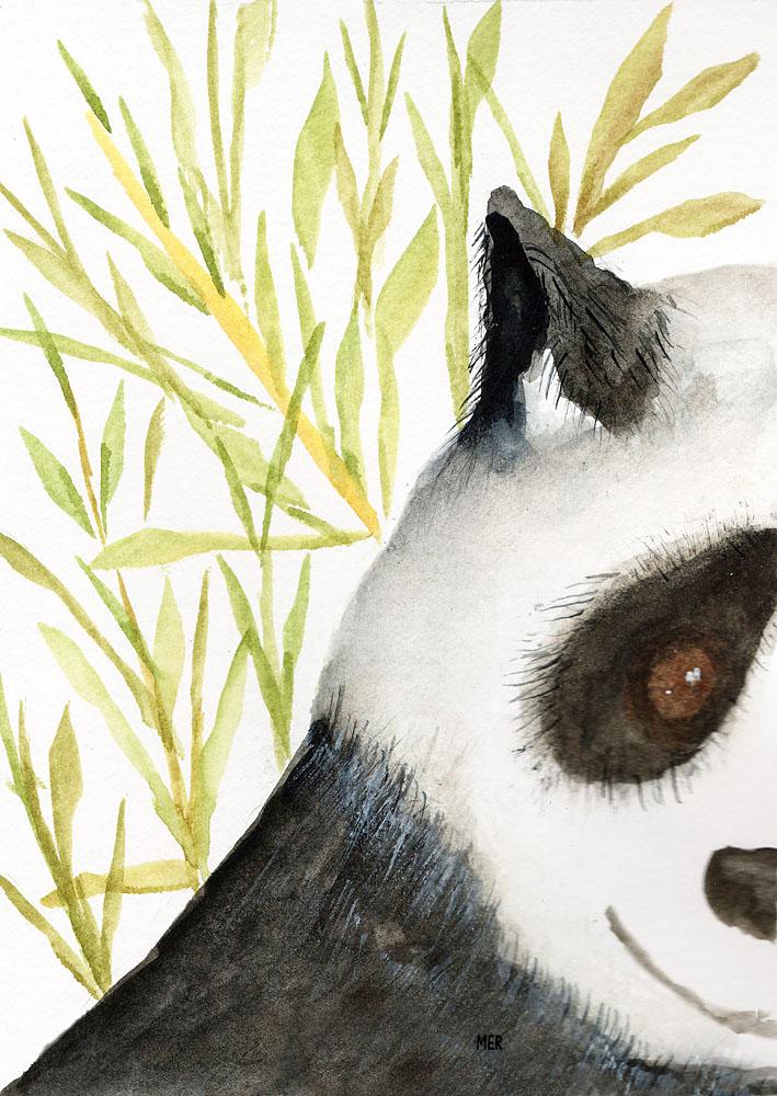 2/22/19 Panda 2.22.19 Panda img179