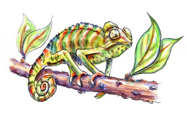 Day 11 - Chameleon Watercolor - Doodlewash
