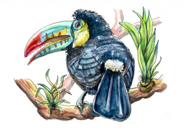 Day 13 - Toucan Rainforest Watercolor - Doodlewash