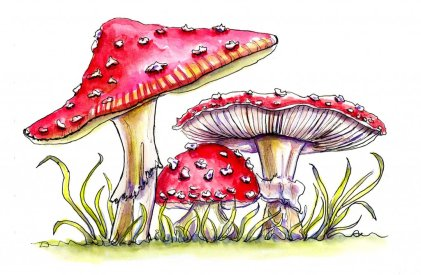 Day 4 - Fly Agaric Storybook Mushrooms Watercolor - Doodlewash