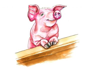 Day 5 - Year Of The Pig 2019 Watercolor - Doodlewash