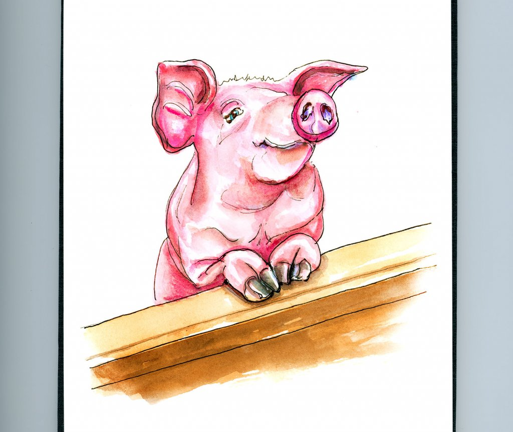 Day 5 - Year Of The Pig 2019 Watercolor - Sketchbook Detail - Doodlewash