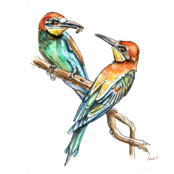 Bee Eater Watercolor Print Detail