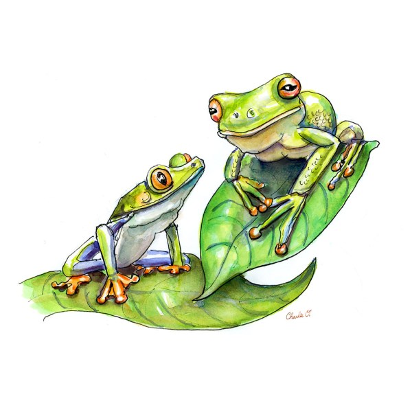 Two Frogs Mother Child Watercolor Print Detail
