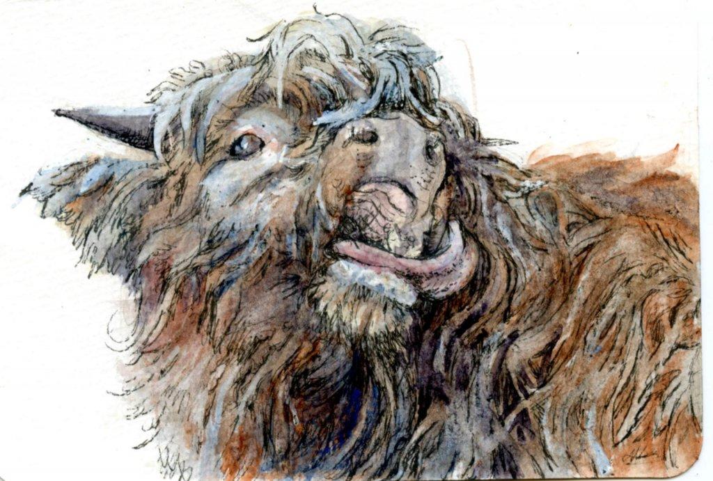 Prompt #Cow – To the Last Drop-Zebra Zensations Technical Pen & Daniel Smith Watercolors o
