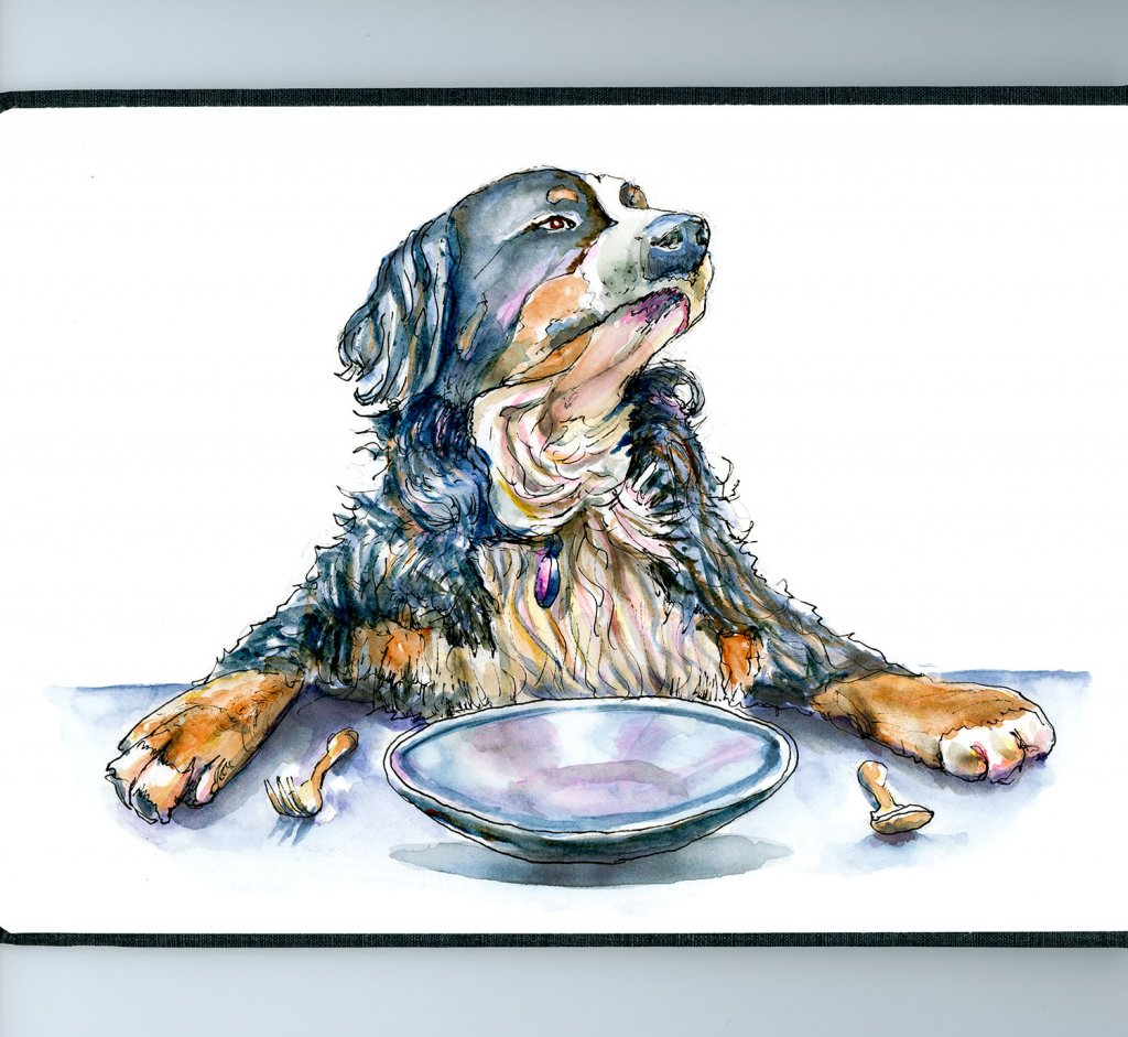 Bernese Mountain Dog Watercolor Illustration - Doodlewash